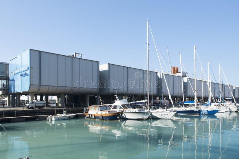 Aquarium de Gênes photos libres de droits
