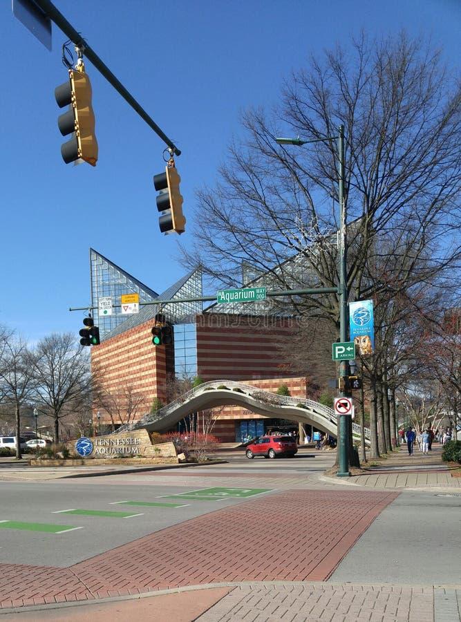 Aquarium du Tennessee à Chattanooga dehors image libre de droits