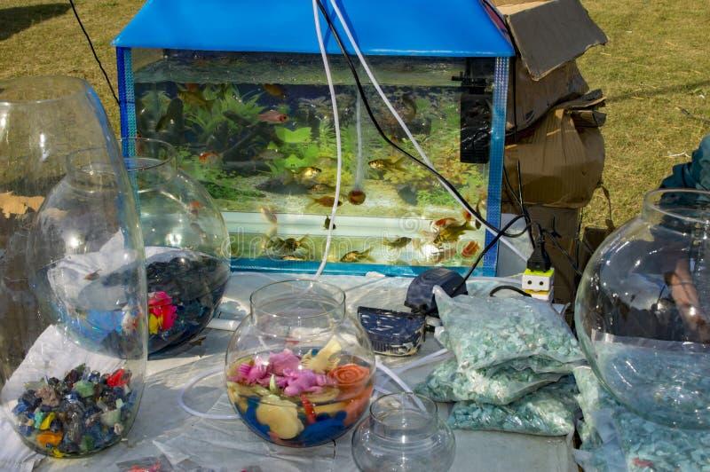 Aquarium et d'autres accessoires de poissons photo libre de droits
