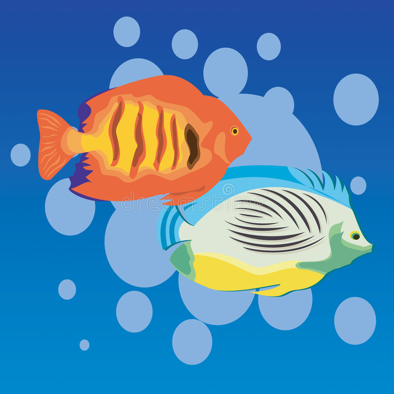Aquarium Fish. Swimming in bubbles stock illustration