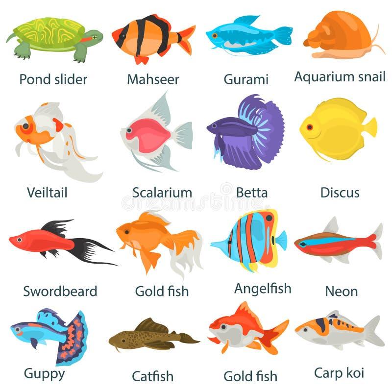 Aquarium fish color flat icons set. For web and mobile design royalty free illustration