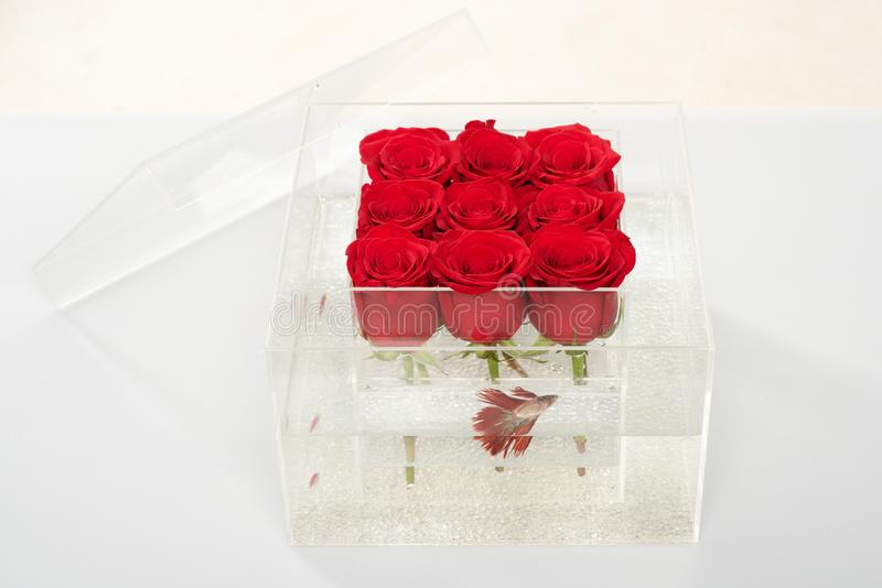 Aquarium with fish and roses. Flower shop. red rose bouquet in box. Love and passion. Floral design. Valentines day. Present. rose in water in transparent vase stock photography