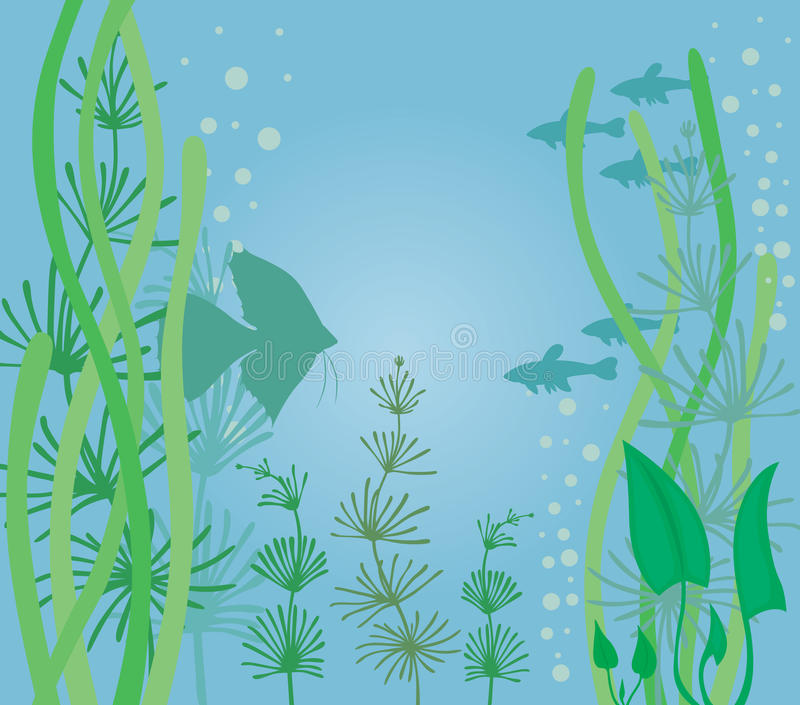 Aquarium met vissen vector illustratie