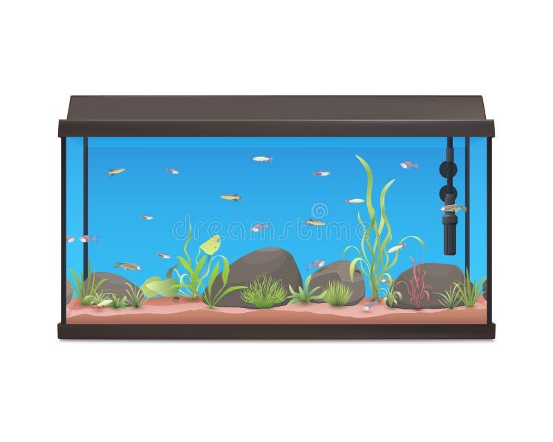 Aquarium met vissenstenen en installaties vector illustratie