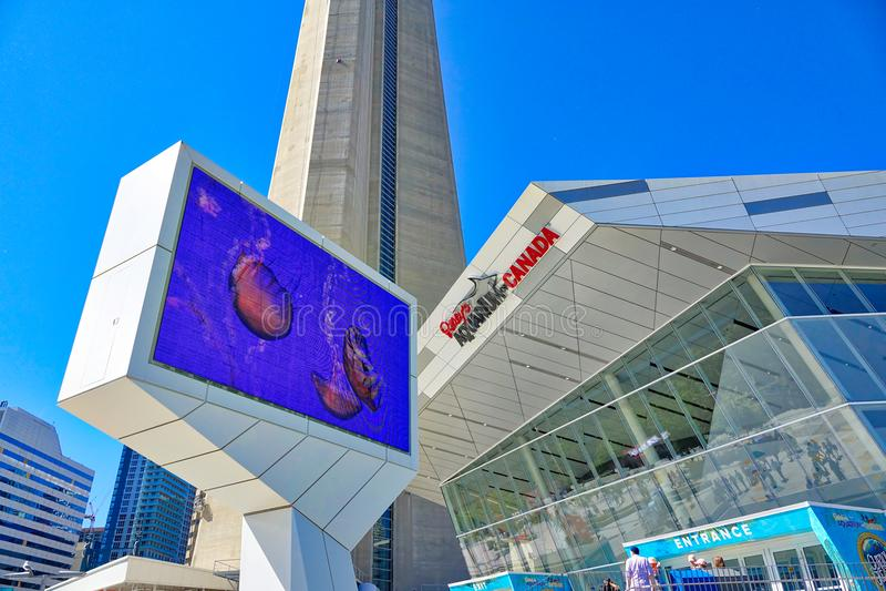 Aquarium nouvellement construit de Ripleys dans le Canada de Toronto photo stock
