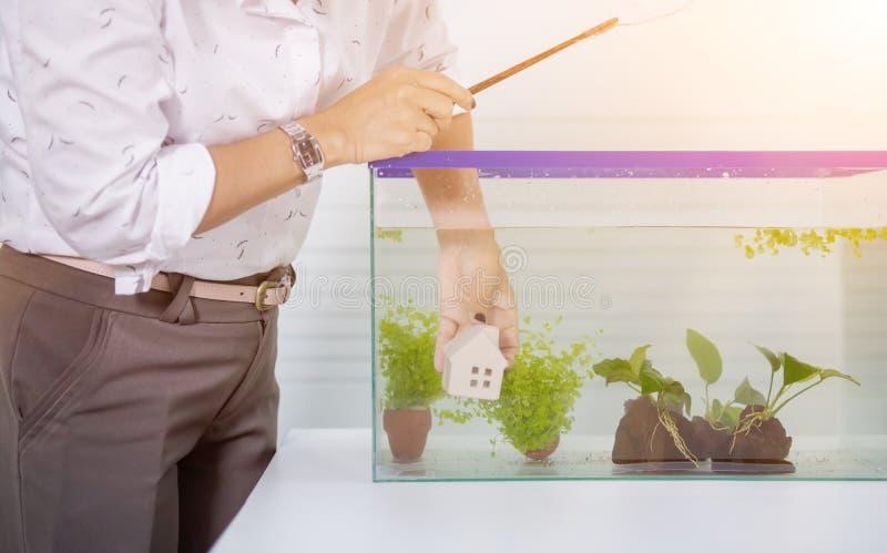 Aquarium pour l'animal familier et le passe-temps ? la maison image stock