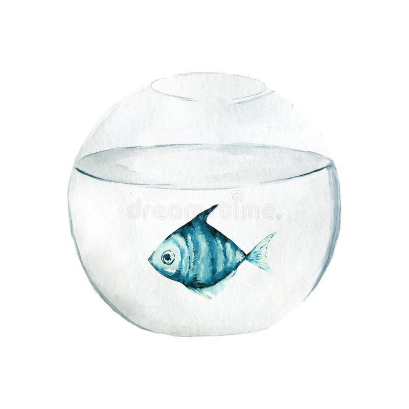 Aquarium, a realistic aquarium with fish and algae. Watercolor illustration of aquarium with fish isolated on white vector illustration