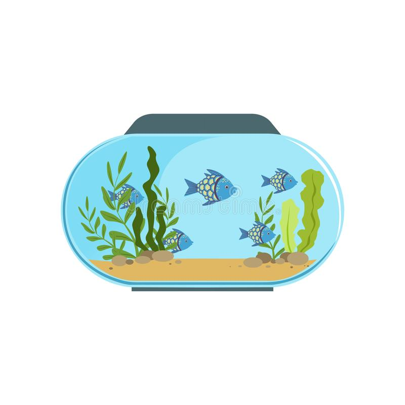 Aquarium in round shape with blue exotic fishes. Freshwater fish tank with seaweed and stones on sand. Underwater world royalty free illustration