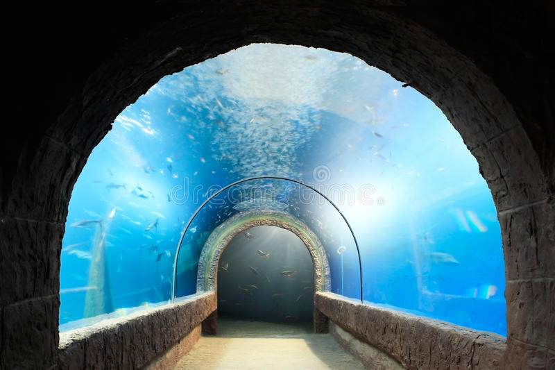 Aquarium tunnel. Aquarium tunnel for walk to see the underwater royalty free stock photo