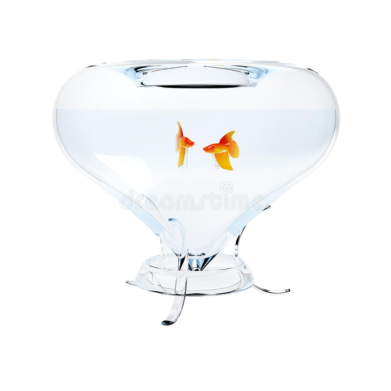 Aquariumgoldfische stockfotografie