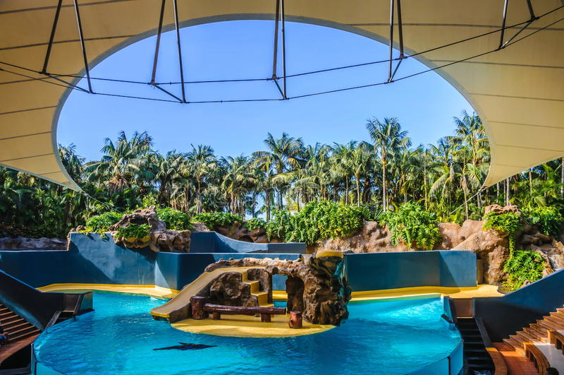 Aquashowszene in Loro Parque, Teneriffa, Kanarische Inseln lizenzfreie stockbilder