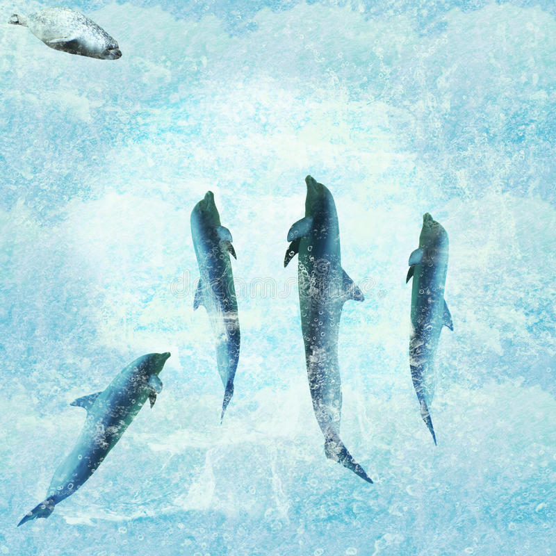 Download Aquatic Background With Dolphins Dancing Stock Illustration - Image: 22826855