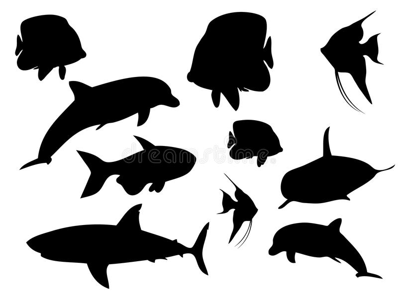 Aquatic Silhouettes Stock Images