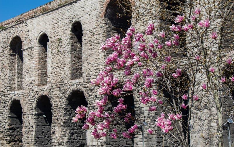 Aquedect histórico em Fatih, Istambul na exposição imagem de stock