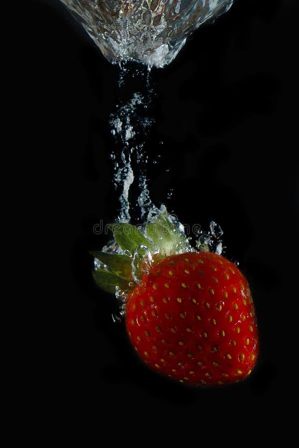 Aqueous strawberry III stock photos