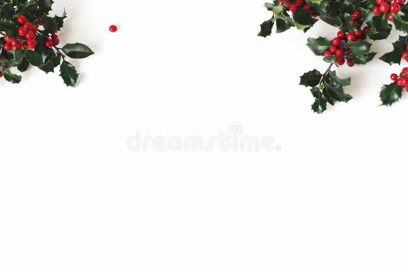 Aquifolium d'Ilex de houx de Noël d'isolement sur le fond blanc de table Feuilles d'arbre avec les baies rouges L'espace vide pou image stock