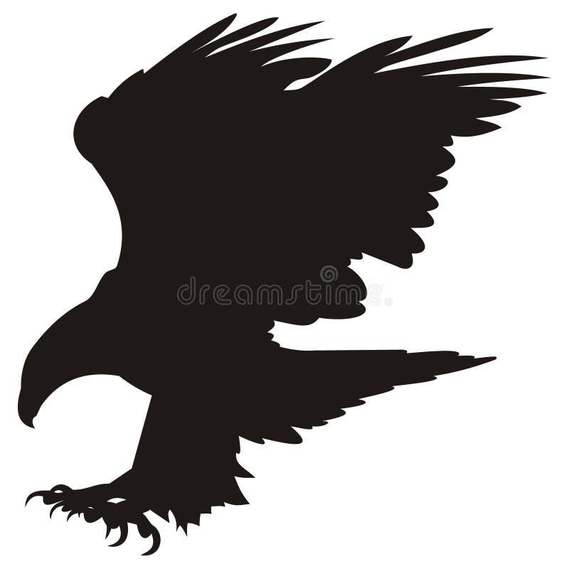 Aquila di volo illustrazione vettoriale