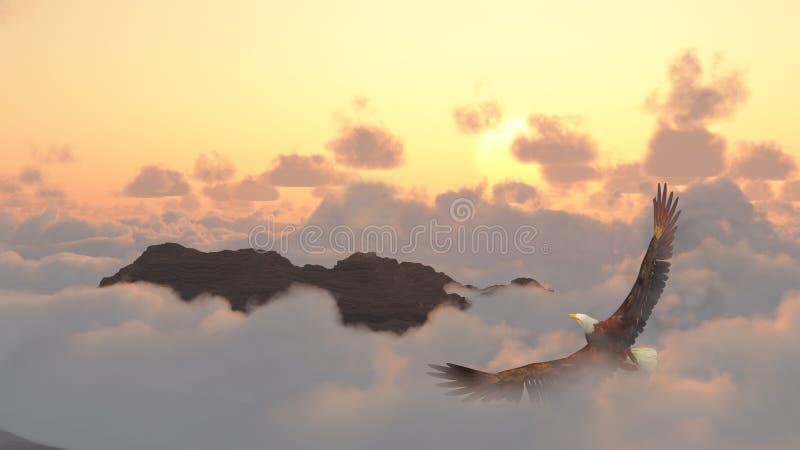 Aquila durante il volo sopra le nubi fotografie stock libere da diritti