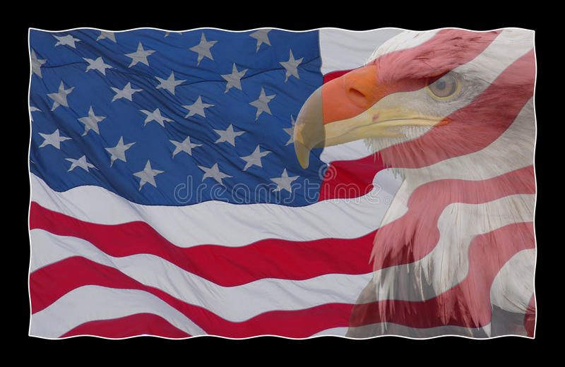 Aquila e la bandiera americana illustrazione vettoriale