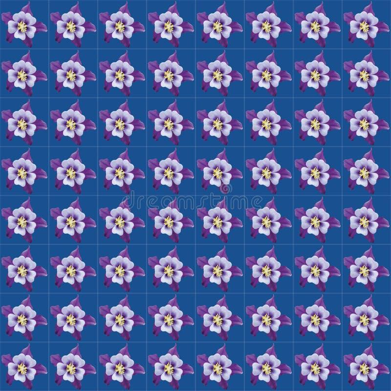 Aquilegia头状花序的一个重复的样式 免版税库存图片
