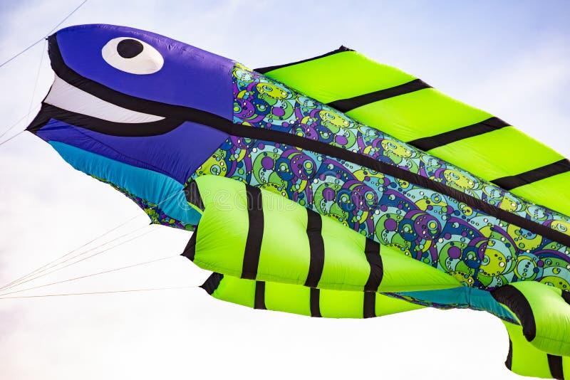 Aquilone volante con a forma di pesce immagine stock