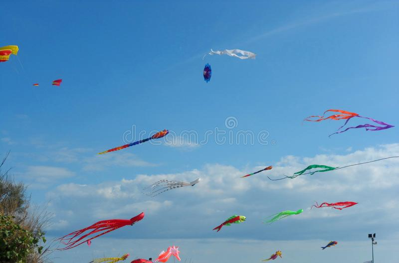 Aquiloni sopra il volo del mare nel cielo immagini stock libere da diritti