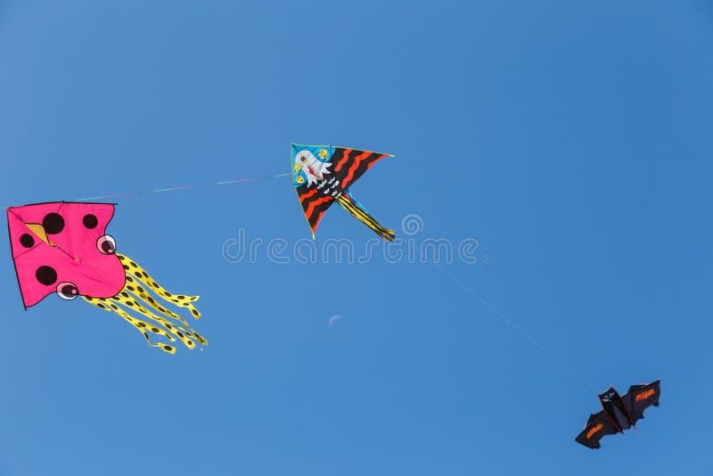 Aquiloni variopinti che galleggiano in un cielo immagini stock