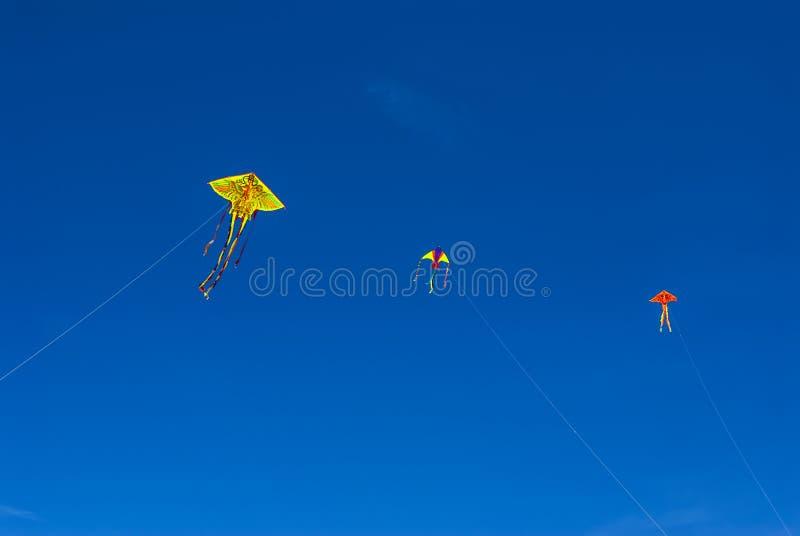 Aquiloni variopinti nel cielo blu fotografie stock libere da diritti