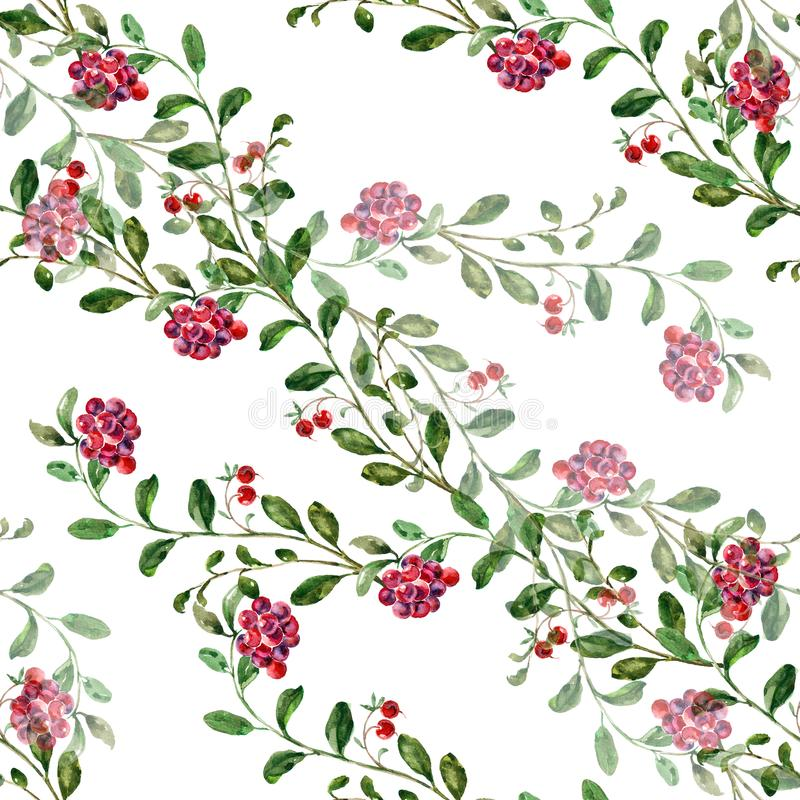 Arándano de la acuarela en un fondo blanco Modelo inconsútil floral stock de ilustración