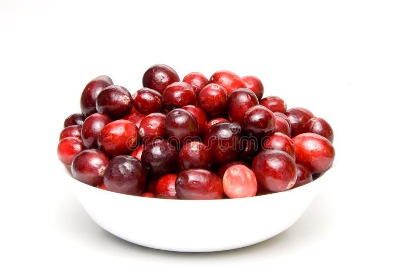 Download Arándanos imagen de archivo. Imagen de sabor, fruta, dieting - 7280463