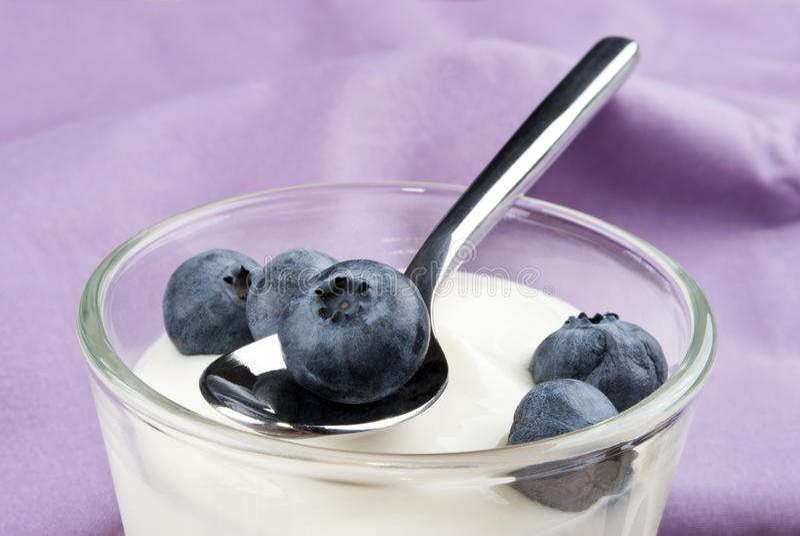 Arándanos con el yogur fresco imagen de archivo libre de regalías