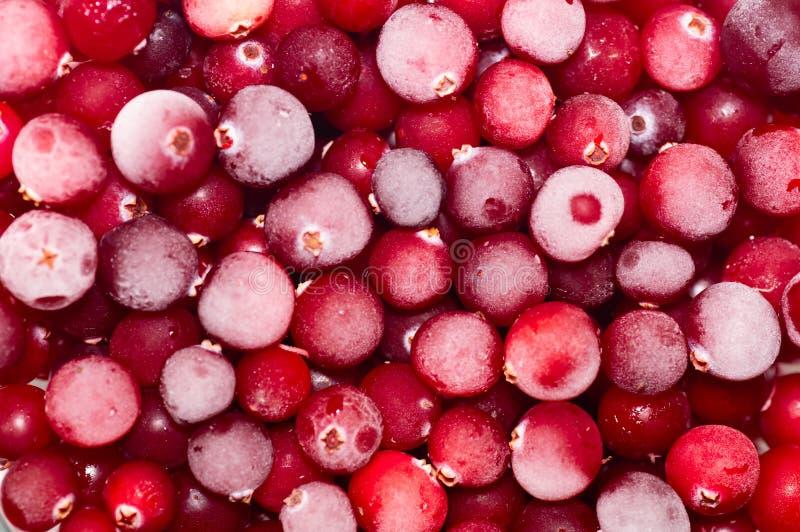 Arándanos congelados del primer, fondo Endecha plana, visión superior Vitaminas naturales imágenes de archivo libres de regalías