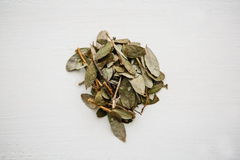 Arándanos de la hierba seca para cocinar mentiras herbarias del té útil en una superficie de madera imágenes de archivo libres de regalías