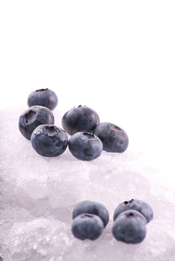 Arándanos en el hielo frío imagen de archivo
