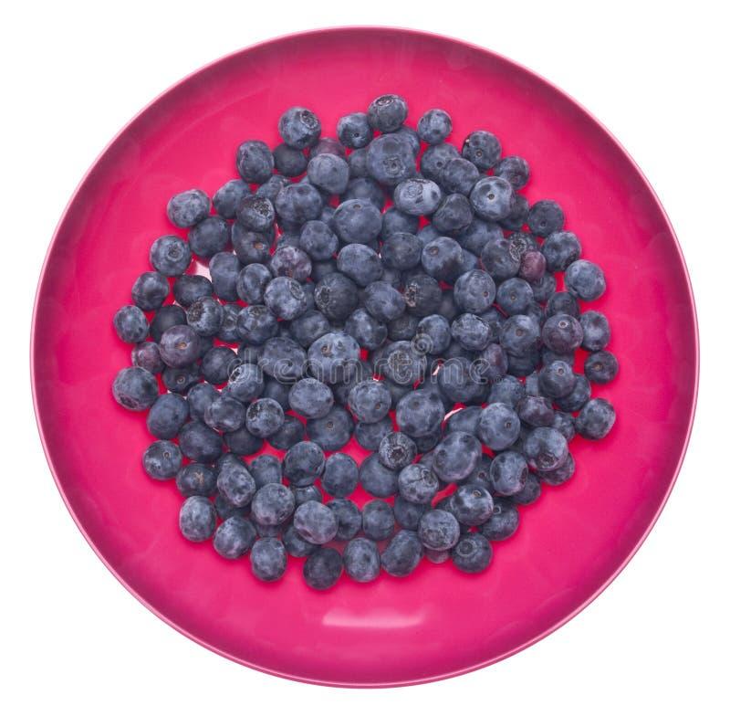 Arándanos frescos en un tazón de fuente rosado vibrante foto de archivo libre de regalías