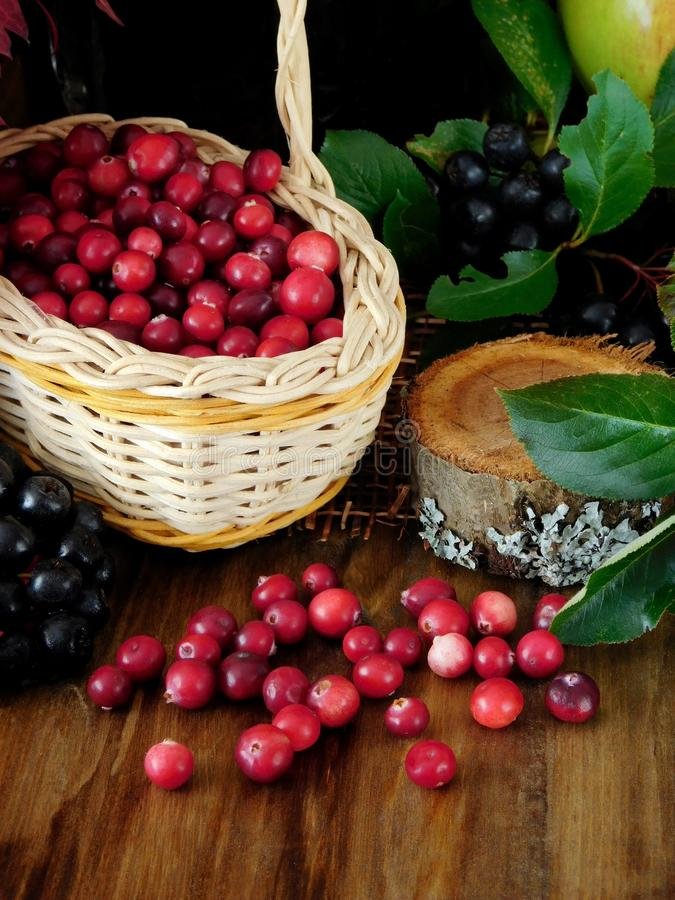 Arándanos o lingonberries en una cesta de mimbre y dispersados en una tabla de madera fotos de archivo libres de regalías