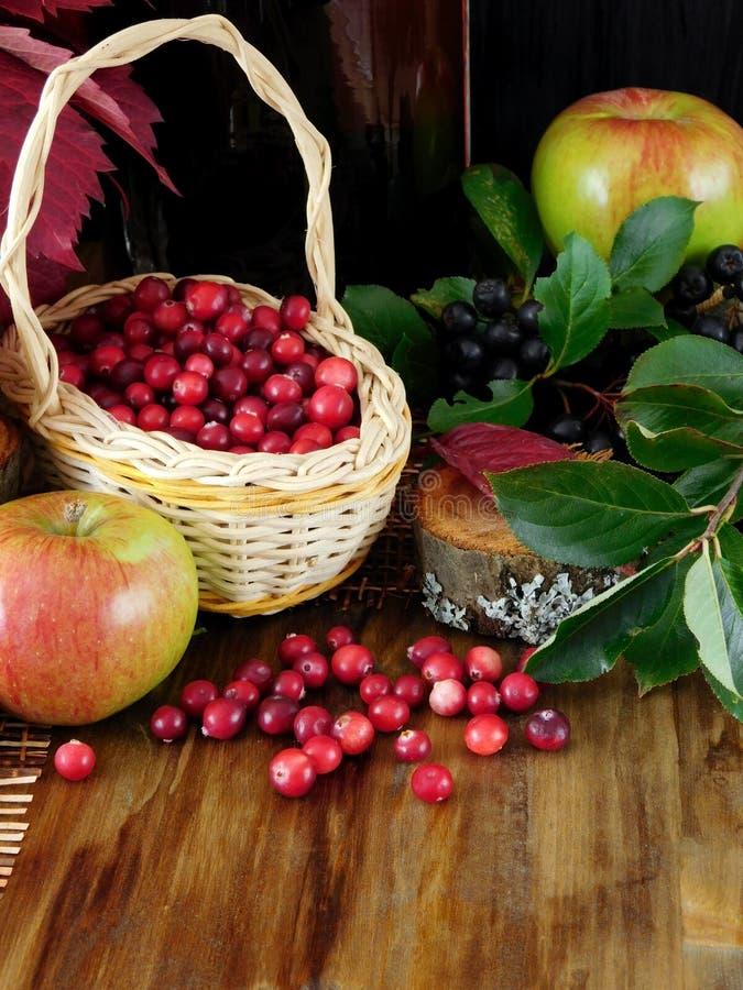 Arándanos o lingonberries recientemente escogidos en una cesta de mimbre imagenes de archivo