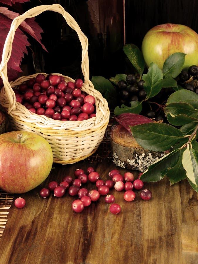 Arándanos o lingonberries recientemente escogidos en una cesta de mimbre y dispersados en una tabla de madera fotografía de archivo libre de regalías