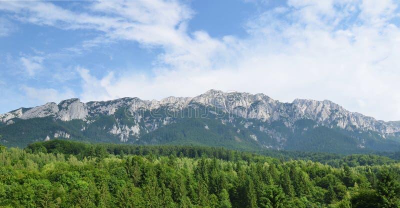 Arête de montagne de chaux des montagnes de Piatra Craiului image libre de droits