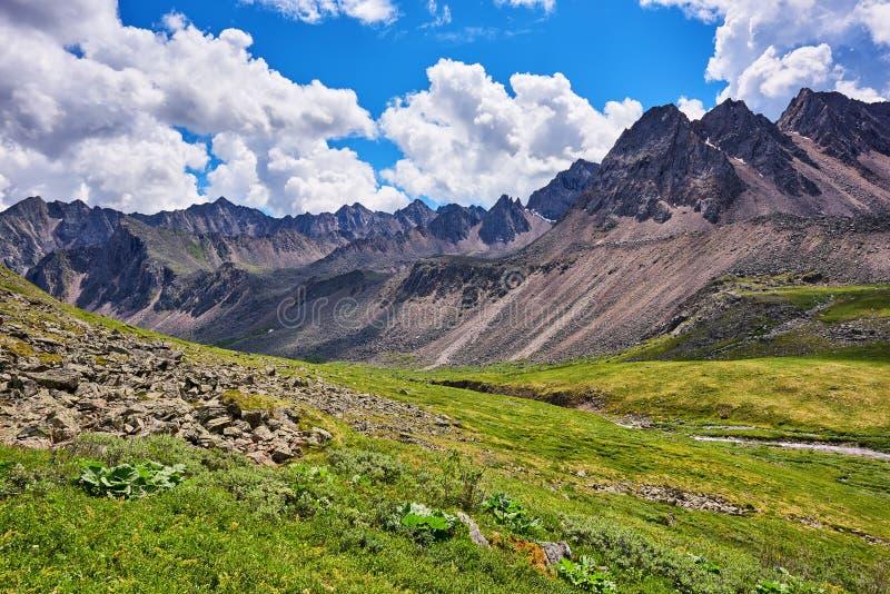 Arête de toundra de montagne images stock