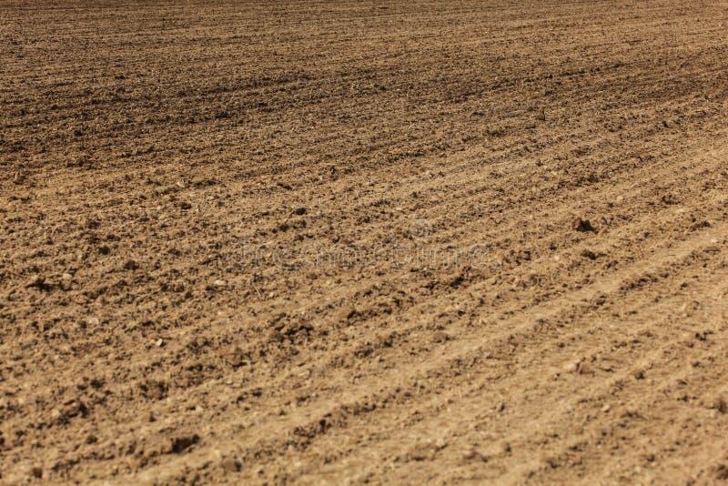 Aró recientemente el campo, líneas de la paleta visible en tierra Fondo abstracto de la agricultura imagen de archivo