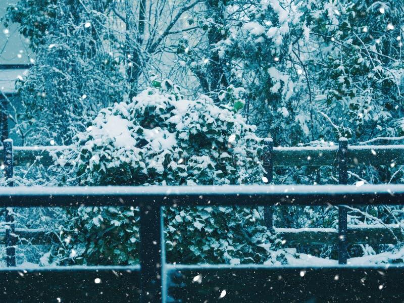 Ar livre da queda da neve no campo imagens de stock royalty free