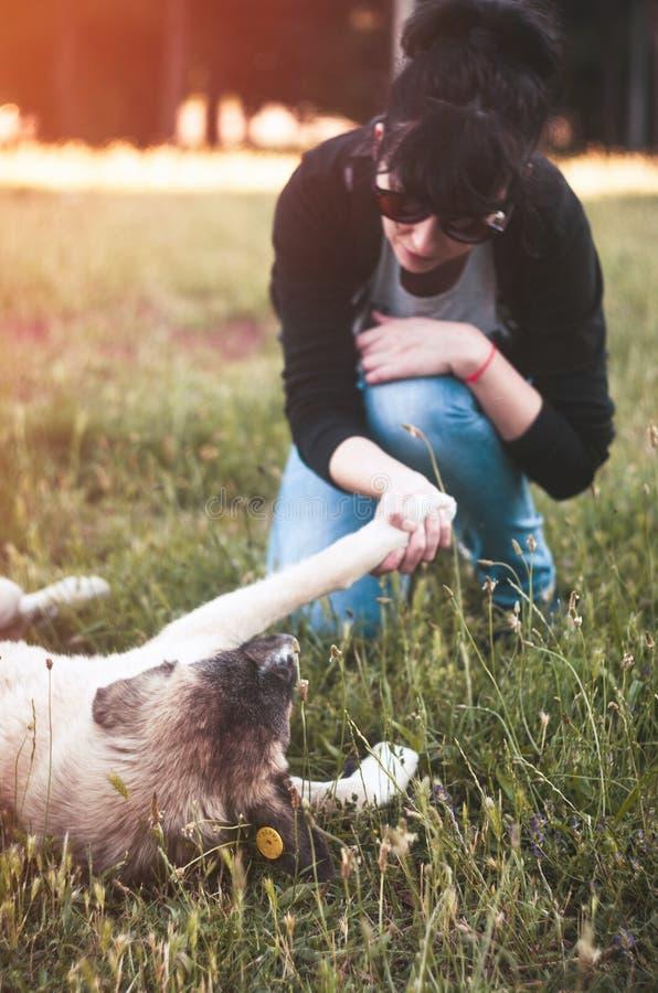 Ar livre do cão com menina fotografia de stock