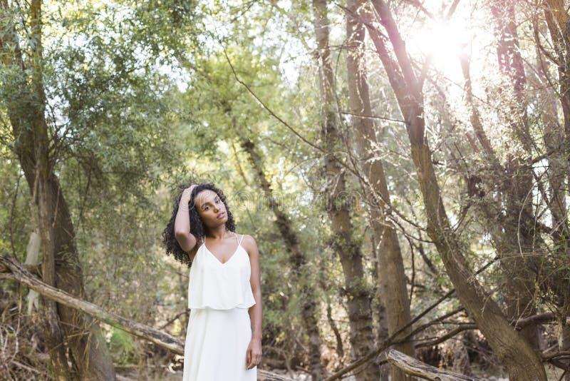 Ar livre do retrato de uma mulher afro-americana nova Backgrou verde fotografia de stock