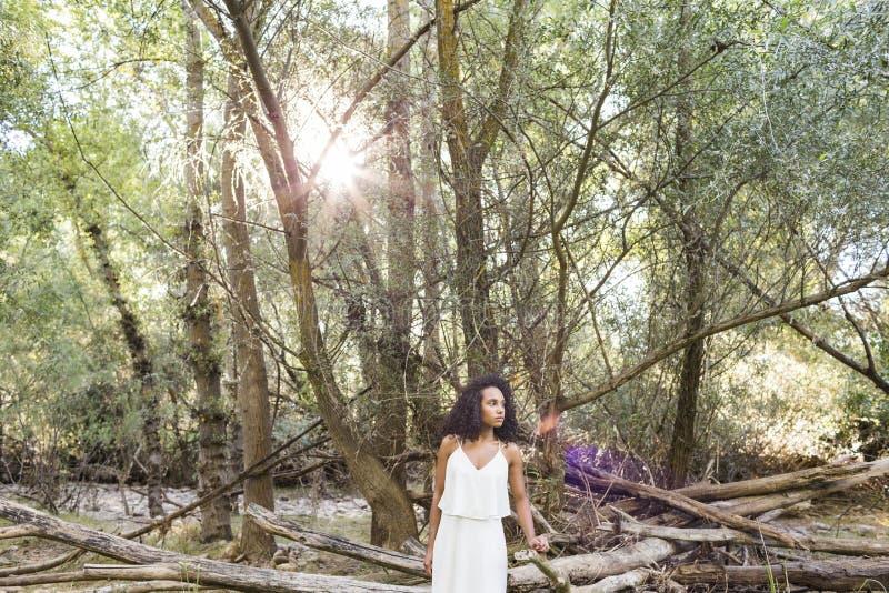 Ar livre do retrato de uma mulher afro-americana nova Backgrou verde imagem de stock royalty free