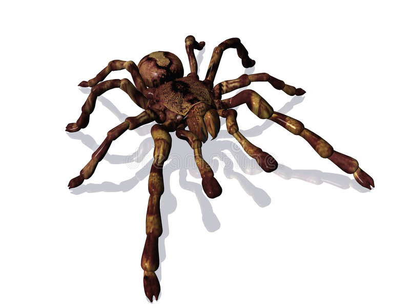 Araña libre illustration