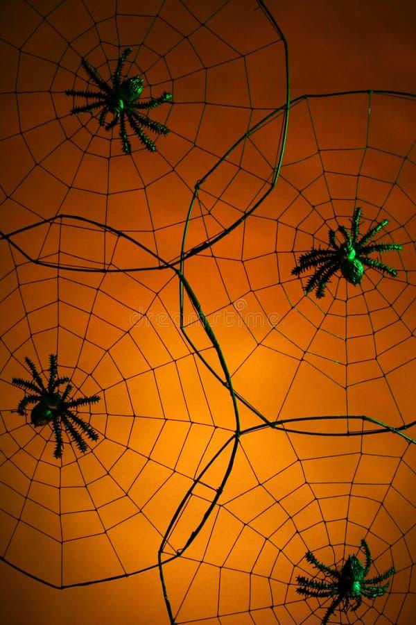 Arañas Espeluznantes Imágenes de archivo libres de regalías