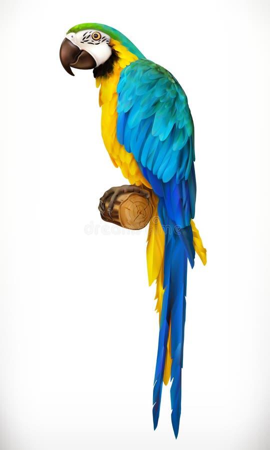 Ara鹦鹉 金刚鹦鹉 3d图标向量 皇族释放例证