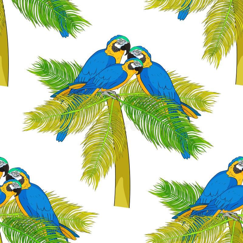 Ara sans couture de modèle un araruna bleu jaunâtre de perroquet Vecteur i illustration libre de droits
