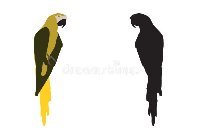 Ara-Vogel in Weiß isoliert Einfaches Macaw-Papagei-Symbol, Vektor-eps 10 lizenzfreie abbildung
